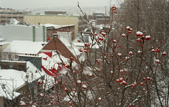 Vieux-Quebec #4 (nroclaniffirg) Tags: newyears