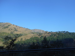 Day 25, a state of bliss. (Somersaulting Giraffe) Tags: trees sky mountains roadtrip blueskies onmyway abbottabad