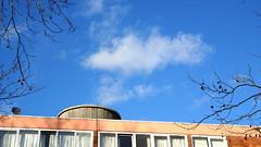 What this is? (Julie70 Joyoflife) Tags: blue sky london clouds blackheath january lookingup bleu ciel londres nuages janvier nori springinwinter photojuliekertesz photojulie70