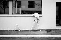 baby ladder (gato-gato-gato) Tags: street leica winter bw white black classic film blanco monochrome analog person schweiz switzerland flickr noir suisse strasse zurich negro streetphotography pedestrian rangefinder human streetphoto manual monochrom zrich svizzera weiss zuerich blanc ilford m6 manualfocus analogphotography schwarz ch januar wetzlar onthestreets passant mensch sviss leicam6 zwitserland isvire zurigo filmphotography streetphotographer homedeveloped fussgnger manualmode zueri strase filmisnotdead streetpic messsucher manuellerfokus gatogatogato fusgnger leicasummiluxm35mmf14 gatogatogatoch wwwgatogatogatoch streettogs believeinfilm tobiasgaulkech