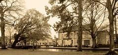 BOURTON ON THE WATER (chris .p) Tags: uk trees winter england tree water river nikon january cotswolds gloucestershire bourton cotswold 2016 d610 windrush bourtononthe villarge