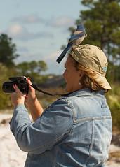 IMG_4055 (Bill Jelen) Tags: hat birding scrubjay rockledge birdonhat