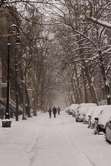 Snowstorm Jonas-22 (Diacritical) Tags: snow brooklyn iso800 pattern jonas blizzard 70 f50 2470mmf28 0ev nikond4 nikoncorporation sec secatf50 douglascpalmer2014 january232016 snowstormjonas