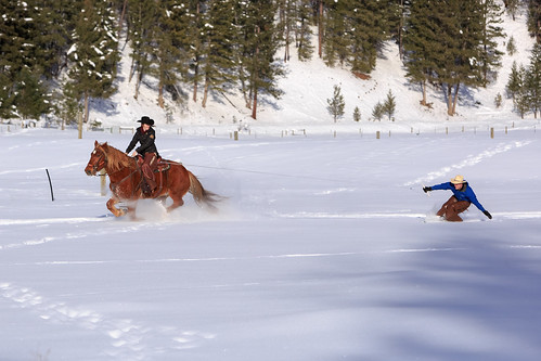 Triple Creek Ranch Skijoring