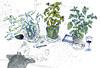 20160215110848_020 (ranflygenring1) Tags: illustration iceland drawing illustrations nordic scandinavia reykjavík ran rán flygenring ránflygenring ranflygenring icelandicillustrator flygering icelandicillustrators nordicillustrators