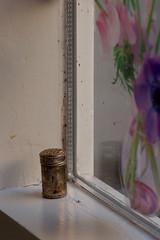 Salt Shaker - Sigma-Z 135mm 2.8 Pantel lenstest (leunkstar) Tags: food color window kitchen salt sigma saltshaker shaker tele 28 135 prepare ais 135mm telelens lenstest d90 pantel nikond90 sigmaz pantell