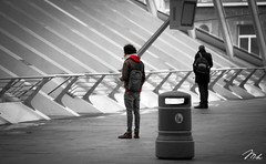 Guillemins Railway Station, Lige (MHPhotography91) Tags: white black station train photography day gare railway end mh 70200 lige quartier desaturate 2016 guillemins canon6d