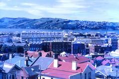 Dunedin City overlooking Otago Peninsular (Lim SK) Tags: otago dunedin peninsular