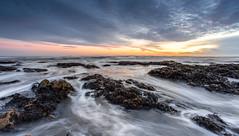 Sunrise (Steven Peachey) Tags: uk morning light sea england sun seascape seaweed beach clouds sunrise canon landscape photography coast rocks exposure northeastcoast northeastengland blackhallrocks ef1740mmf4l lee09gnd canon6d lee06gnd stevenpeachey