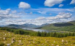 Glengarry, Invergarry (Poulomee Basu) Tags: beautiful landscape scotland roadtrip landscapephotography richcolour scottishsummer