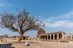 Hampi (Velachery Balu) Tags: sunset sunrise karnataka hampi psm thungabadra lotusmahal krishnadevaraya vittalatemple steppedtank hazararamatemple psmtour saraswathitemple vijayanagaraempire hemakutatemple royalenclosures bhimasgate february2016 chandrasekaratemple malayavanthahill octagonalwaterpavilion purandaradasamandapam