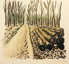 local woods, February 2015 (run.write.draw) Tags: brushpen polychromos
