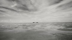 empty ocean (KnorrDennis) Tags: ocean blackandwhite bw panorama nature water landscape see boat tide landschaft nordsee elbe ebbe cuxhaven northsee dennisknorr