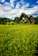 Shirakawa-go fields (@PAkDocK / www.pakdock.com) Tags: wood city travel viaje flowers blue light sky sun white alps building green beautiful japan architecture clouds rural alpes magazine landscape japanese rice angle postcard sony traditional voigtlander wanderlust hut cover fields japon outstanding shirakawa beutiful a6000 pakdock sonya6000