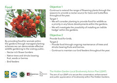 The Hidden Gardens Local Biodiversity Action Plan (LBAP) Postcards