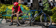 2016 - Mexico City - Coyoacan - Jardn Centenario (Ted's photos - Returns mid May) Tags: park shadow sunglasses bike bicycle wheel bench mexico nikon mexicocity seat spokes wheels chain gloves seats cropped seating parkbench helmut vignetting rider waterbottle 2016 jardncentenario onebottle parkscene inapark tedsphotos nikonfx tedsphotosmexico nikond750 jardncentenariocoyoacn