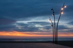 15/52 Sunrise (Nathalie Le Bris) Tags: blue sunrise alba amanecer hour aurora aurore leverdesoleil aube heurebleue horaazul