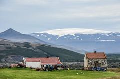Drei Schafe (Panasonikon) Tags: panasonikon gletscher schafe traktor berg landschaft landscape island iceland moutain bauernhof nikond5100 nikkor55300 explore