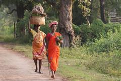Kiwali - Bastar - India (wietsej) Tags: india zeiss women sony tribal a700 chhattisgarh kiwali bastar sal135f18z