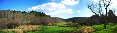 |~Heaven and Earth~| (jase) Tags: sky panorama mountain color tree green clouds landscape scenery pentax hiking greece trail grecia optio griechenland parnitha