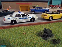 Maui Police CVPI (Phil's 1stPix) Tags: ford hawaii police replica cop policecar greenlight fordmustang lawenforcement diorama scalemodel diecast hotpursuit firstpix mauihawaii johnnylightning chevysilverado cvpi diecastcar crownvictoriapoliceinterceptor diecastmodel photoscape fordpolice modeldiecast diecastcollection 164scale diecastcollectible 164diecast diecastvehicle policediecast diecastpolice mauipd 1stpix policemodel modelpolice hawaiipolice countyofmaui greenlightdiecast diecastdiorama 164police greenlightpolice 164vehicle 164scalediecast lawenforcementdiecast 164diorama 164car collectiblediecast fordcvpi 164automobile hotpursuitseries mauipolicedepartment phils1stpix industrialparkdiorama 2008fordcvpi mauipolicediecast vehicle1535