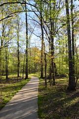 DSC_0978 (julian jones (arkansas)) Tags: travel trees plants sunlight green history nature leaves lines curves perspective shapes ground places trail arkansas height aboretum photowalking