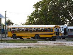 """Orange Walk: les vieux """"school bus"""" américains, les seuls transports publics du Belize <a style=""""margin-left:10px; font-size:0.8em;"""" href=""""http://www.flickr.com/photos/127723101@N04/26051586526/"""" target=""""_blank"""">@flickr</a>"""