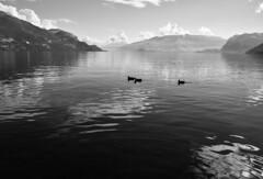 Nell'immensit (illyphoto) Tags: lakecomo comolake lagodicomo lario rezzonico illyphoto photoilariaprovenzi