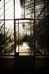 Bain de lumire 2 (Sylvain Alexandre) Tags: light glow lumire magic greenhouse bain magical magie serre