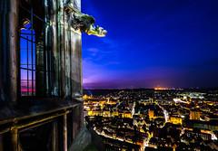 Ulm bei Nacht vom Munster.jpg (martinpmayer) Tags: scanning ulm ulmermnster spiegelbilder