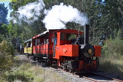 DS_Train_6_McLeansIsland_09April2016 (nzsteam) Tags: price train island traction engine railway scene steam engines locomotive boiler boilers mcleans sawmilling