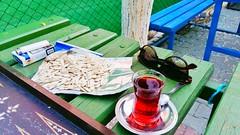 Zbeyde hanm parknda ay ekirdek. Edirnede yaayanlar iyi bilir. (bernamzrk1) Tags: park turkey photo tea trkiye bank ay edirne tavla fotoraf gzlk idem fotoraflk trakya ekirdek