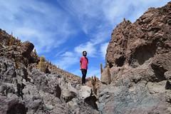 wild (MussaUrbana) Tags: chile atacama desierto