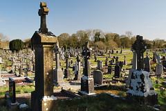 ballinasloe_135 (HomicidalSociopath) Tags: ireland cemetery architecture spring nikon crosses april ballinasloe d60