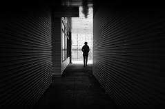 leading lines (Erwin Vindl) Tags: blackandwhite bw monochrome silhouette candid streetphotography innsbruck leadinglines streettogs erwinvindl olympusomd em10markii