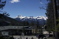Banff, Tunnel Mountain Hike, April 9 2016 (1)_e_apr_11_16 (Velates) Tags: canada mountains alberta rockymountains banffnationalpark