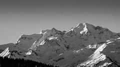 Verbier_bw1 (sh4884) Tags: mountain snow verbier