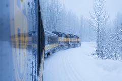 Denali Star Rail (Zhai.W) Tags: railroad winter alaska train   denalistar