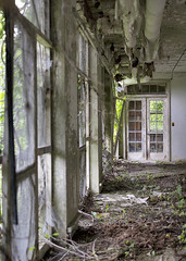NJ TB Hospital (Jonnie Lynn Lace) Tags: vines ruins decay peelingpaint sanatorium derelict decayed decaying tb modernruins naturetakesover tbhospital chasinglight