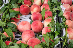 Peaches_2015_ Melissa Donaghue-0112 (daisyvisionxxx) Tags: china street food fruit asia pentax september sidewalk peaches hebei  fruitstand ricoh streetmarket peoplesrepublicofchina 2015  tangshan    hebeiprovince  tangshancity pentaxk50 melissadonaghue 9082015
