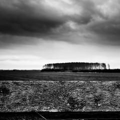 Spring 2016 No. 10 (Nico_1962) Tags: leica bw 35mm landscape spring dof zwartwit bokeh nederland thenetherlands wolken depthoffield lucht lente landschap voorjaar summarit m240 leicam