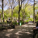 Spring Comes to Union Square Park