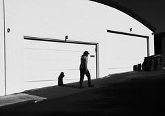 Stopped motion (Spleen Havoc) Tags: street abstract architecture contrast san francisco streetphotography fujifilm minimalism acros blackandwhitephotgraphy xpro2 fujinon35mm fujixseries fujixclub