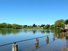 La Dordogne (brigeham34) Tags: france eau maisons eu dordogne rivire paysage reflets ville vieuxport visite berges bergerac vieilleville aquitaine ladordogne gabarres fz45 quaisalvette