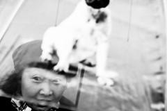 transparent umbrella.. (Cem Bayir) Tags: street leica people blackandwhite bw dog monochrome umbrella 50mm bokeh candid snapshot streetphotography tourist transparent zrich lux asph 5014 leicam 50mmsummilux asperical leicalove leicam240