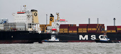 Ships of the Mersey - MSC Sabrina & MSC Alexa (sab89) Tags: sea sabrina water port liverpool docks manchester canal ship ships terminal cargo estuary container birkenhead oil tug alexa shipping tugs carrier mersey tanker msc chemical wirral tankers bulk runcorn smit seaforth stanlow
