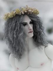 Especially For Masha (Red Ribboned Dolls) Tags: david redribbon sd wreath bjd abjd urke dollshe kuncci woroh urkeresh m28classic