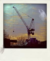crane (Leo Reynolds) Tags: polaroid fake faux phoney fakepolaroid fauxpolaroid poladroid phoneypolaroid xleol30x xxx2016xxx