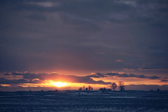 last glimpse (thatgirlwiththekicks) Tags: pink trees winter sunset sky orange sun snow ontario canada london field clouds barn dark golden evening purple farm bare