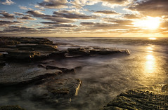 The Golden Waters of Point Cartwright (Kristin Repsher) Tags: longexposure sunrise nikon df rocks waves earlymorning australia queensland sunshinecoast kawana southeastqueensland pointcartwright